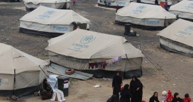 Le organizzazioni internazionali silenti davanti ai migranti