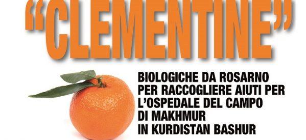Progetto: Clementine, per ospedale del campo profughi di Mahmura