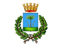 Comune di Mesagne- Delibera del Consiglio comunale per Afrin