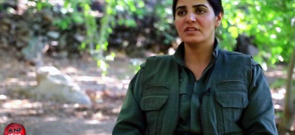 Fehîm: Le donne hanno problemi comuni, devono anche avere una lotta comune