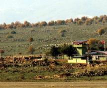 I Soldati turchi stanno costruendo un muro al confine con Afrin