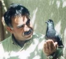 Il Consiglio d'Europa chiede la fine dell'isolamento di Öcalan