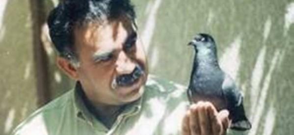 La Turchia che cambia fra Hdp e liberazione di Ocalan