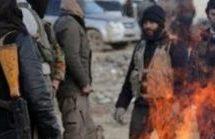 Ancora ruberie e torture ad Afrin