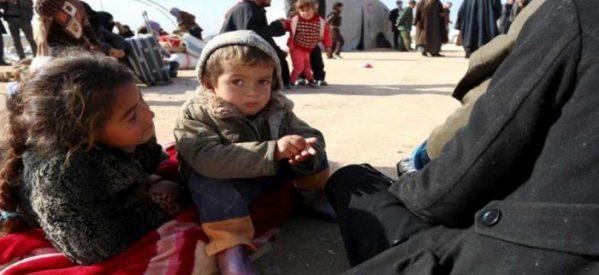 Il Cantone di Cizre sollecita aiuti internazionali per il crescente afflusso di sfollati interni