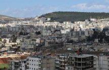 Ad Afrin ulivi come bottino di guerra