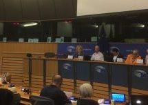 Conferenza del Parlamento Europeo chiede la fine dell'occupazione turca di Efrîn