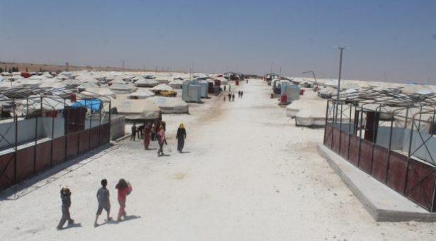 """""""Scorpioni e serpenti minacciano I rifugiati di Al-Raqqa nel campo di Ain Issa"""