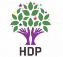 HDP ottiene il 13,1% dei voti, 6 milioni di elettori, 80 deputati