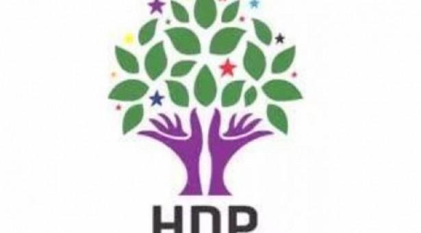 Donne di ogni ceto sociale candidate di HDP