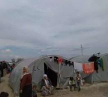 Da Modena a Kobane, viaggio tra i profughi fuggiti alla furia dell'Isis