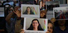 Report della delegazione Internazionale a Diyarbakir