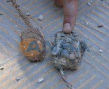 Squadre di sminamento hanno rimosso 600 mine attorno ai silos