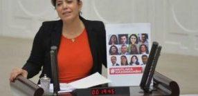 Deputata dell'HDP andrà sotto processo per aver condiviso foto di parlamentari in carcere