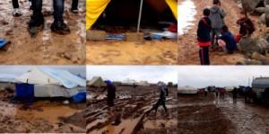 newroz kamp