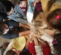 Roma, Scuola Pisacane festeggia il capodanno curdo il Newroz,  21 marzo ore 14