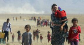 Appello per una Giornata Internazionale d'Azione contro il Femminicidio delle donne Yazide