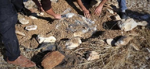 Scoperta una fossa comune di circa 80 donne a Shengal