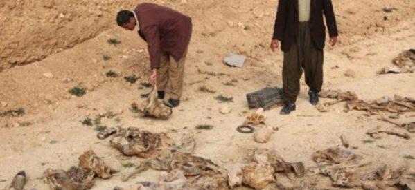 Trovata un'altra fossa comune di donne yazide