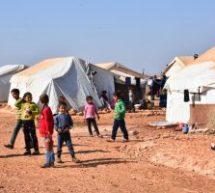 Dossier, L'occupazione di Afrin,Espulsione di massa della popolazione e situazione dei rifugiati a Shehba