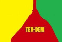 Tevdem : Il progetto di una Siria Democratica