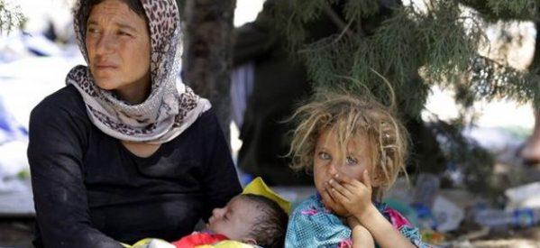 Il trasferimento degli yazidi nel campo AFAD crea le condizioni per un nuovo massacro