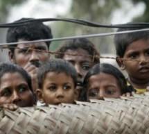 Dove sono i 5169 bambini scomparsi?