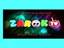 Zarok TV inizia a trasmettere in tre dialetti curdi